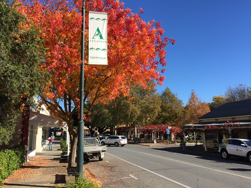 Visiting the Barossa Valley - Angaston Village