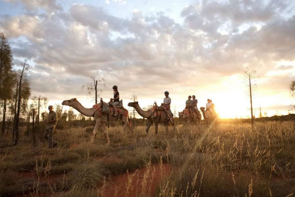 key activities in the uluru region such as camel rides.