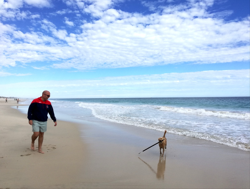 best things in perth with walking dog on the beach