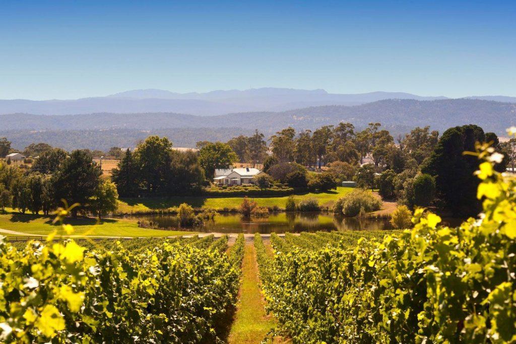 Tamar Valley wine region Northern Tasmania